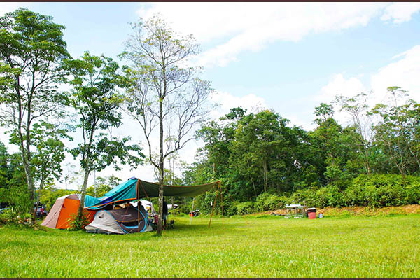 樂活森林露營農場-1.jpg