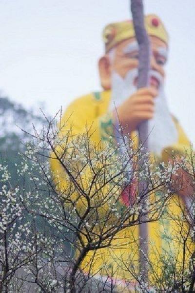 烘爐地(新北市政府).jpg